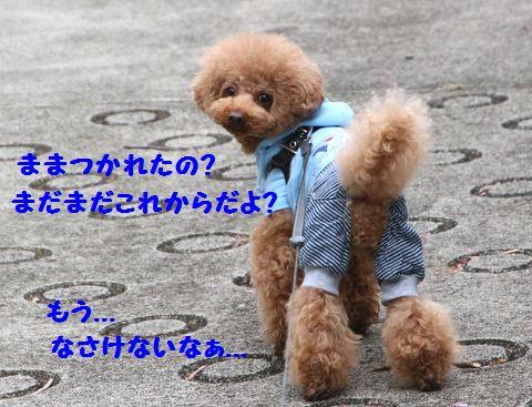 IMG_55922.jpg