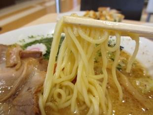 青山製麺 辛し味噌ラーメン 麺