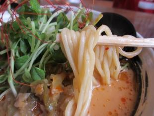風来房長岡 旨辛担々麺 麺