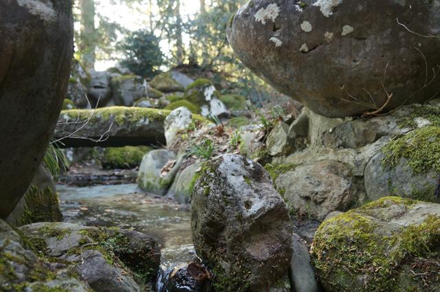 池の水の流れ