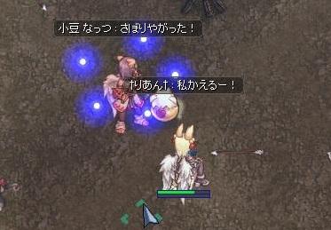 screenLif2753s.jpg