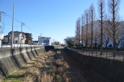 2015-01-10_81.jpg