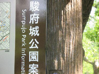 IMG_1085駿府城