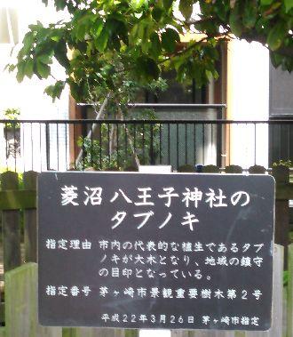 20150517 タブのき (1)