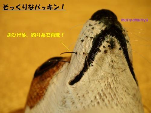 P3120206_convert_20150312004607.jpg
