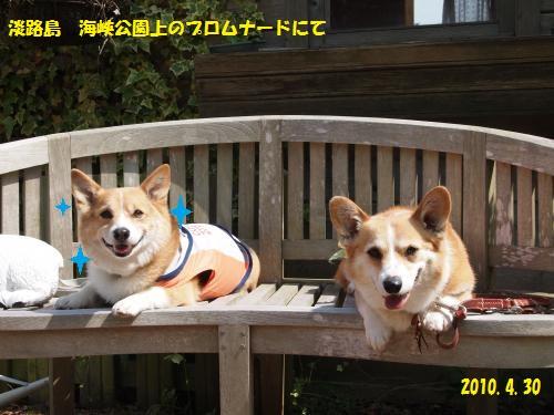 P4300369_convert_20150529002422.jpg