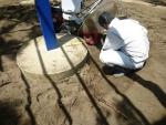 木の根を除去