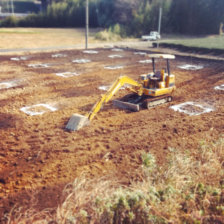 耕作放棄地を再生したオリーブ畑