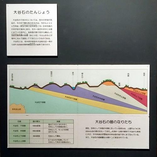 栃木県議会<経済企業委員会>県内調査!大谷資料館へ⑲