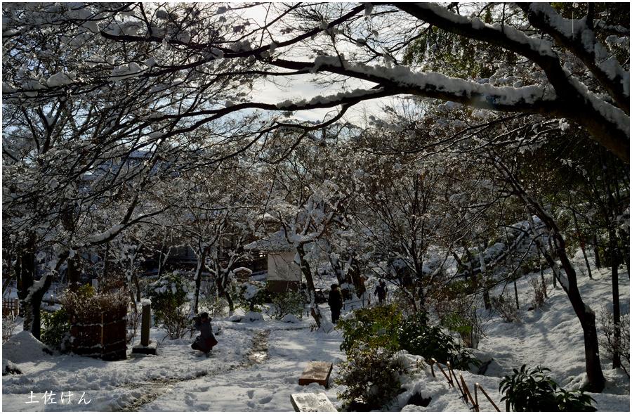 雪の京都2