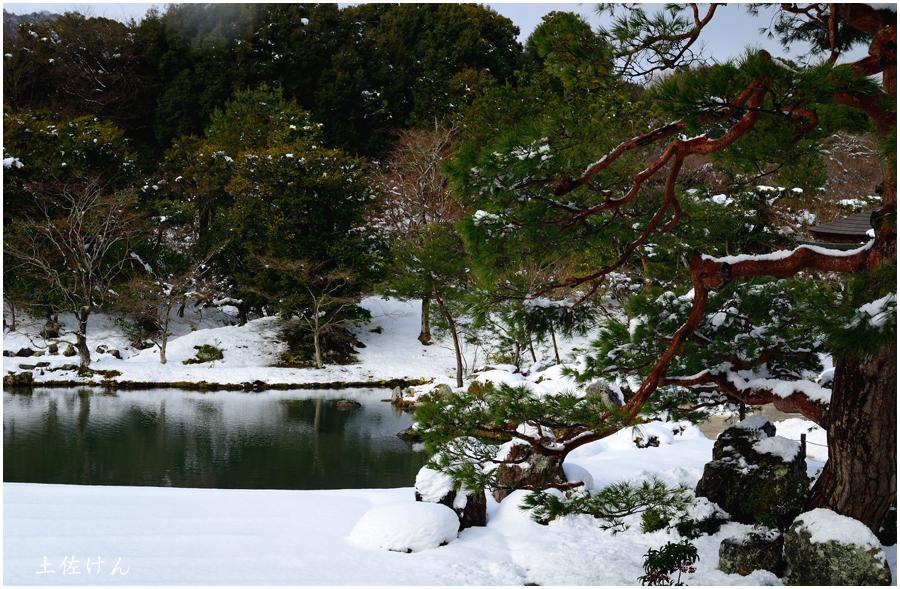 雪の京都4