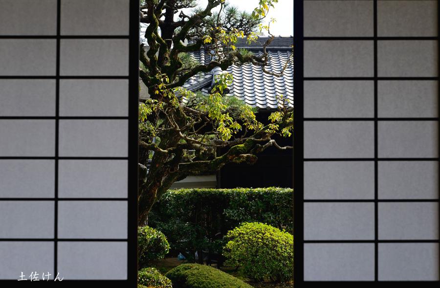 鴻池新田会所2