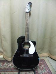 Fender01.jpg