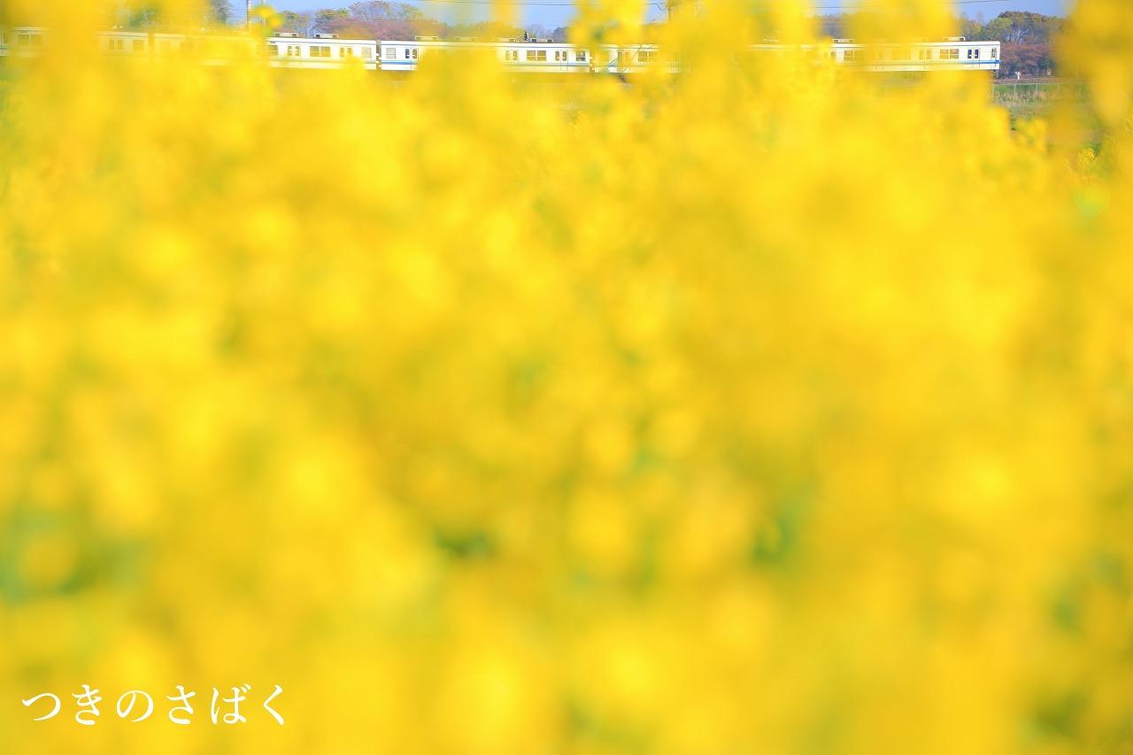 20150424193906de9.jpg
