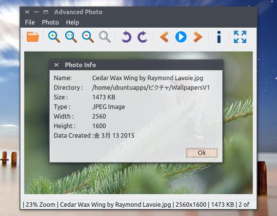Advanced Photo Ubuntu 画像ビューア 画像の情報