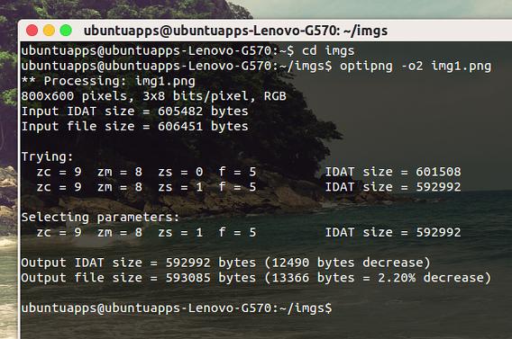 OptiPNG Ubuntu PNG圧縮 コマンドの実行
