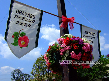 ueki008.jpg