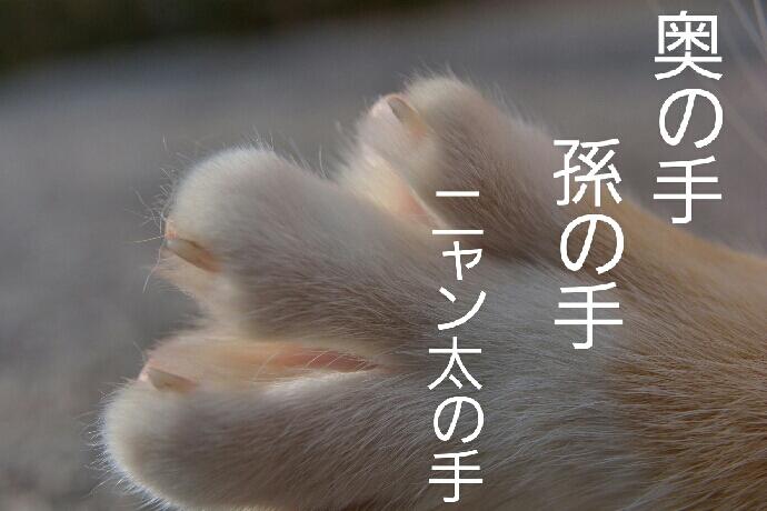 fc2_2015-01-23_21-59-39-474.jpg