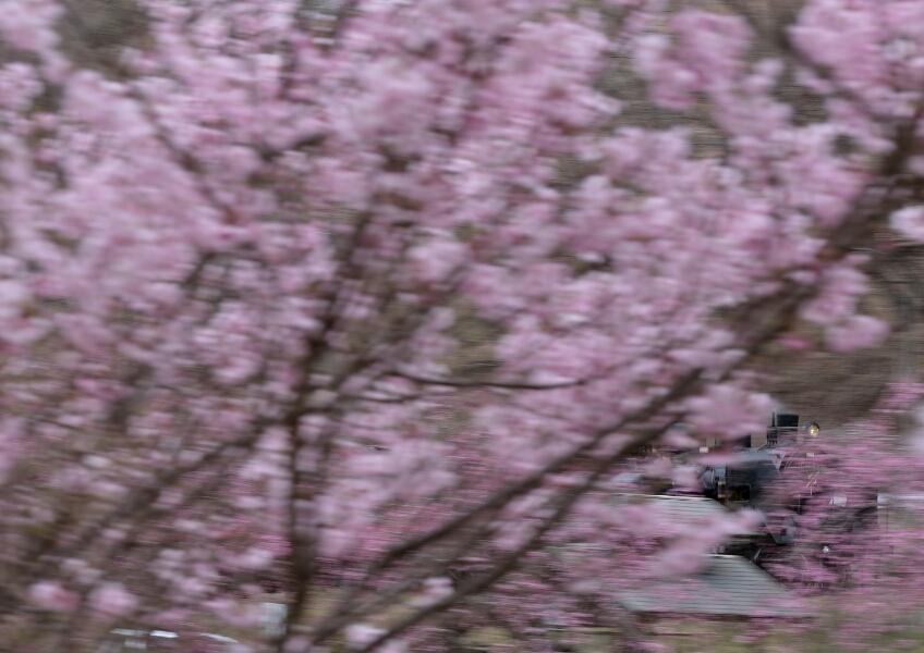 fc2_2015-04-04_22-00-46-131.jpg